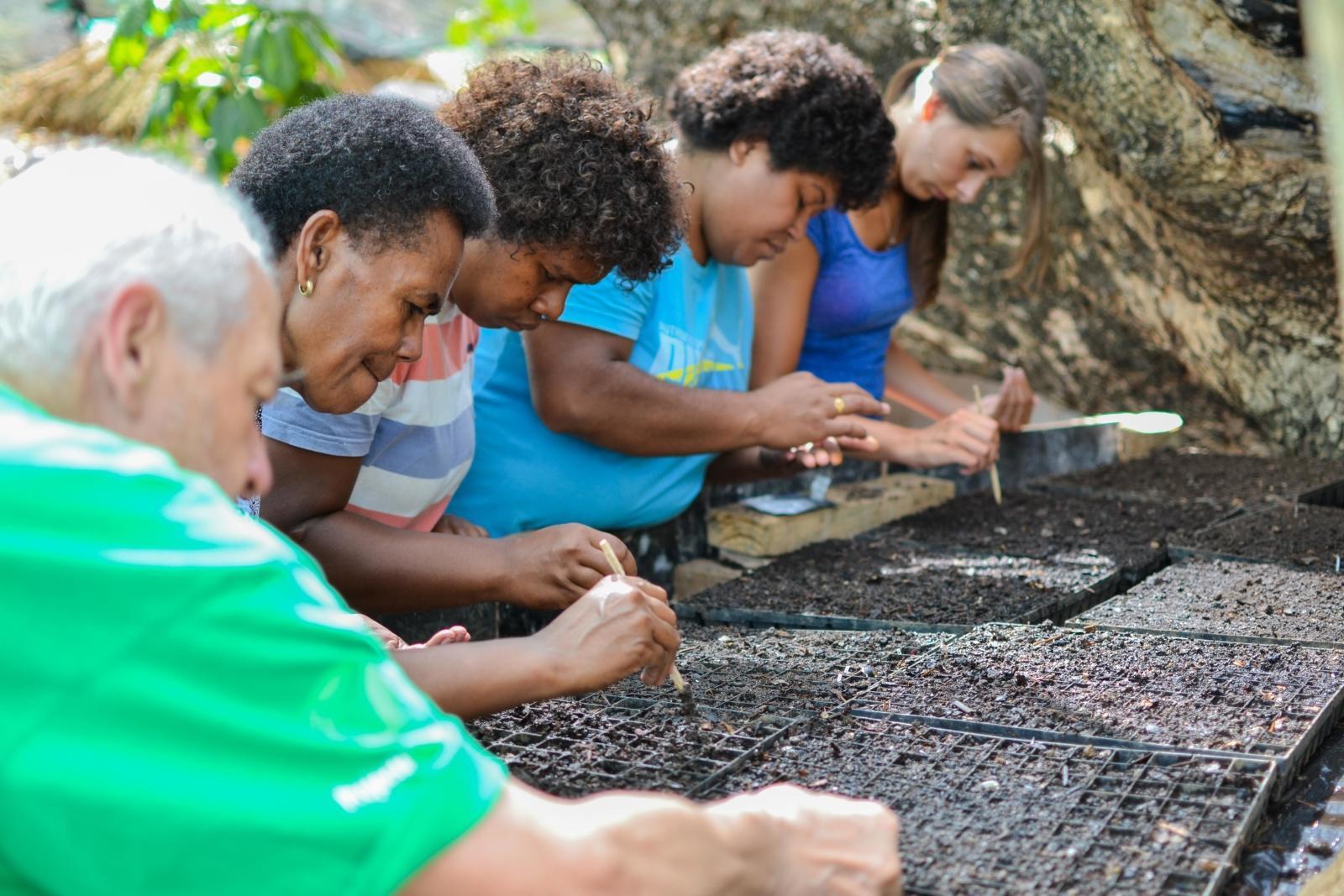 Local people and volunteers planting seedlings.